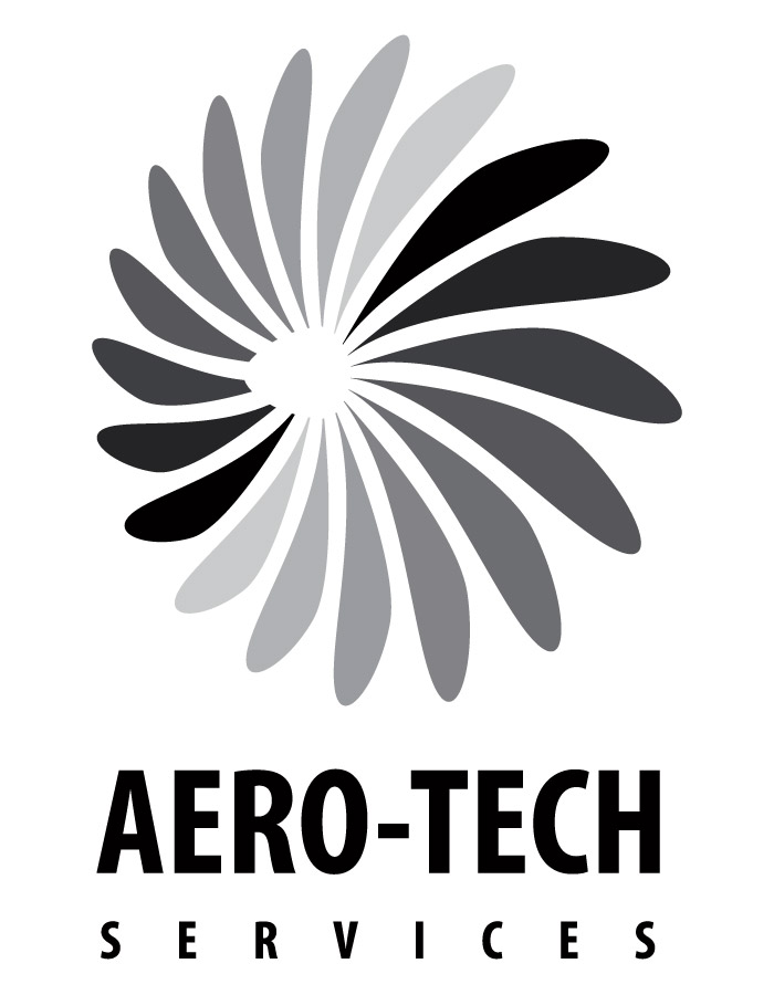 Proposed flight company logo