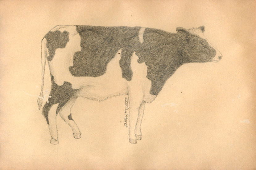 Pencil drawing of a realistic cow