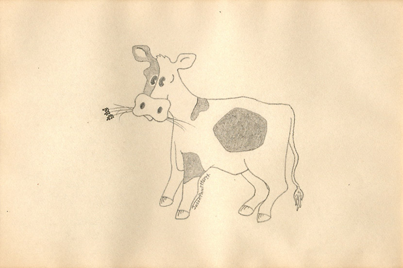 Pencil drawing of a cartoon cow