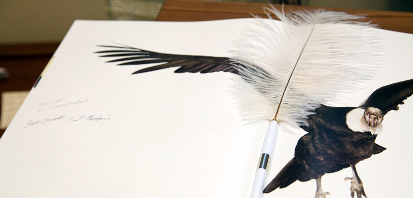 Unconventional guestbook using a book about birds